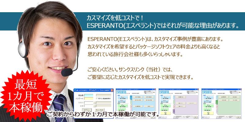 カスマイズを低コストで!ESPERANTO(エスペラント)ではそれが可能な理由があります。